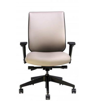 RFM Tech upholstered back chair in San Diego