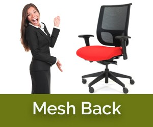 Mesh Back Ergonomic Chairs