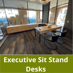 Executive Sit Stand Desks