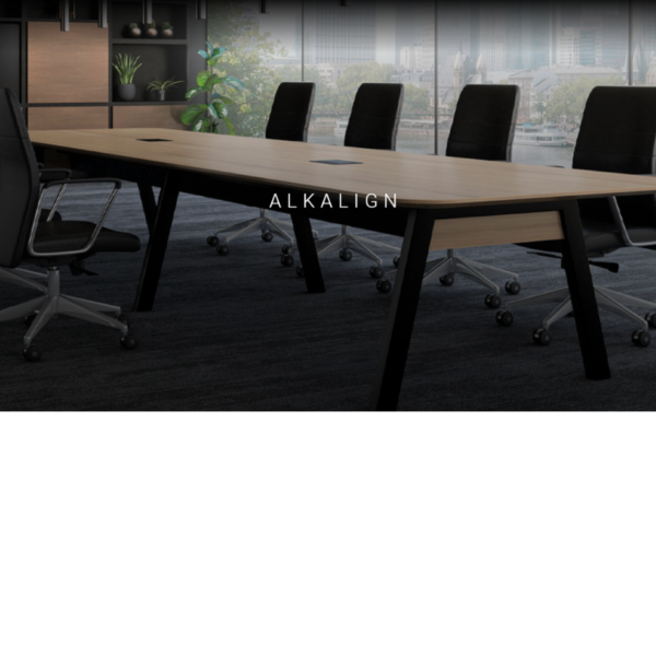 Alkalign conference table